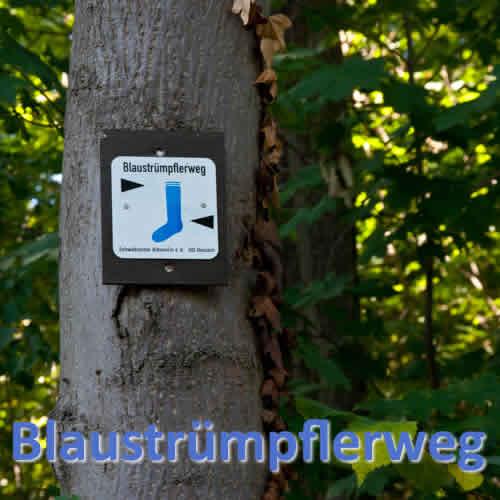 Tour Blaustrümpferweg Infos